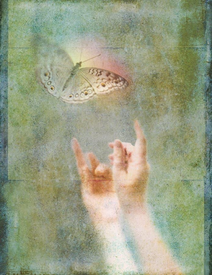 Mains atteignant pour l'illustration rougeoyante de photo de papillon illustration de vecteur