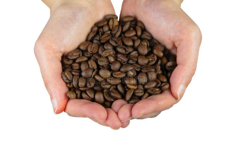 Mains avec des grains de café photographie stock