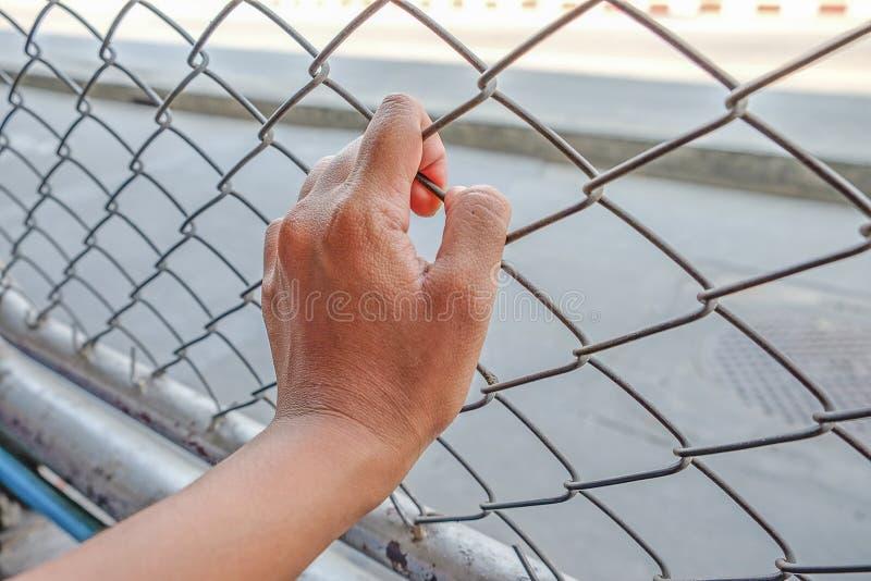 Mains avec la barrière en acier de maille, main en prison image stock