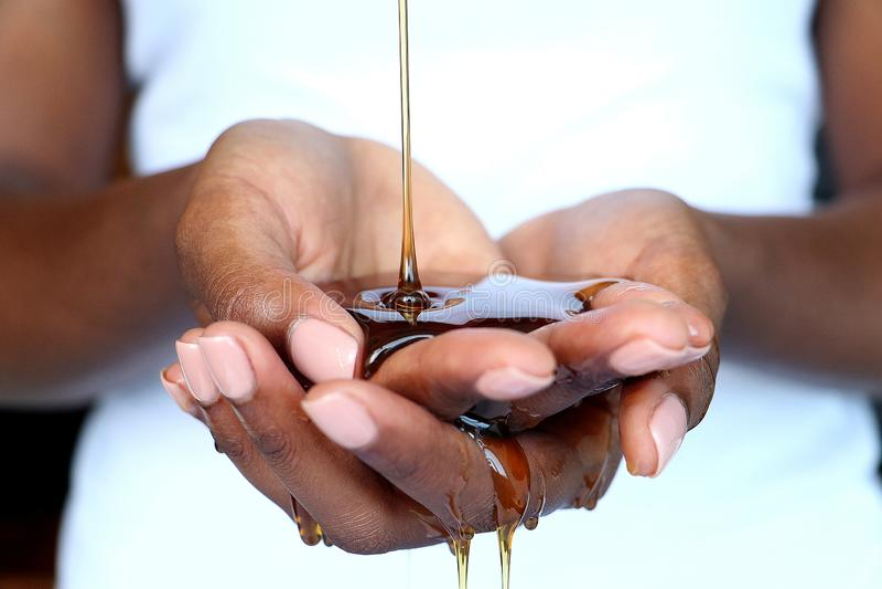Mains d'africain noir tenant le miel photos libres de droits