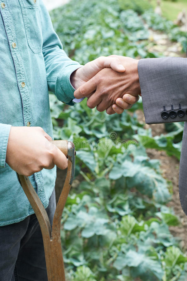 Mains d'And Businessman Shaking d'agriculteur image stock