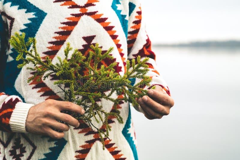 Mains d'homme tenant le mode de vie de voyage de mode de branche d'arbre de sapin photos libres de droits