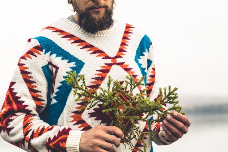 Mains d'homme tenant le mode de vie de voyage de mode de branche d'arbre de sapin photo libre de droits
