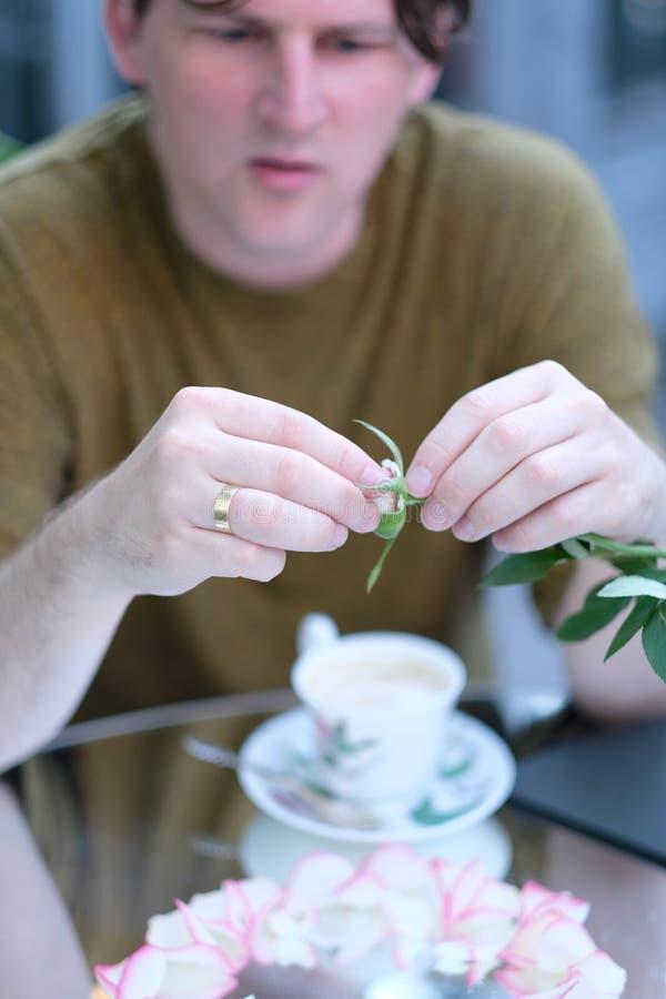 Mains d'un homme avec des pétales de rose photographie stock