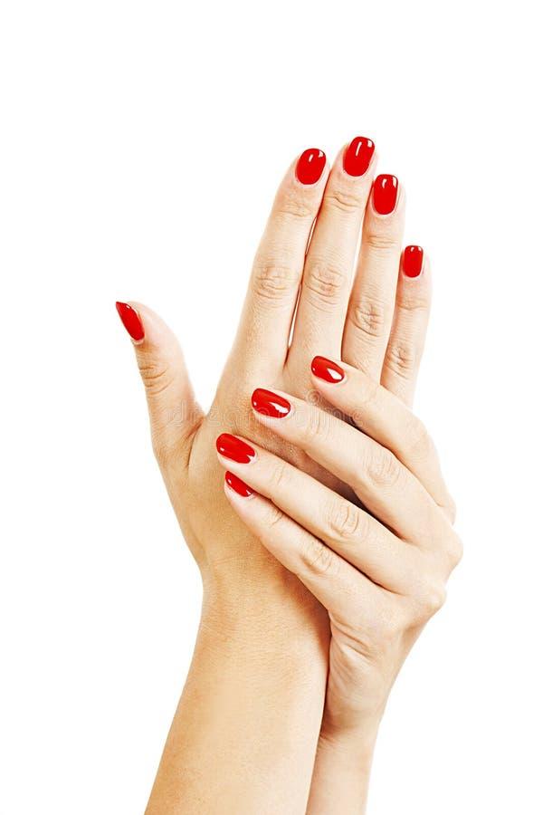 Mains d'une jeune femme avec la longue manucure rouge sur des ongles photos stock