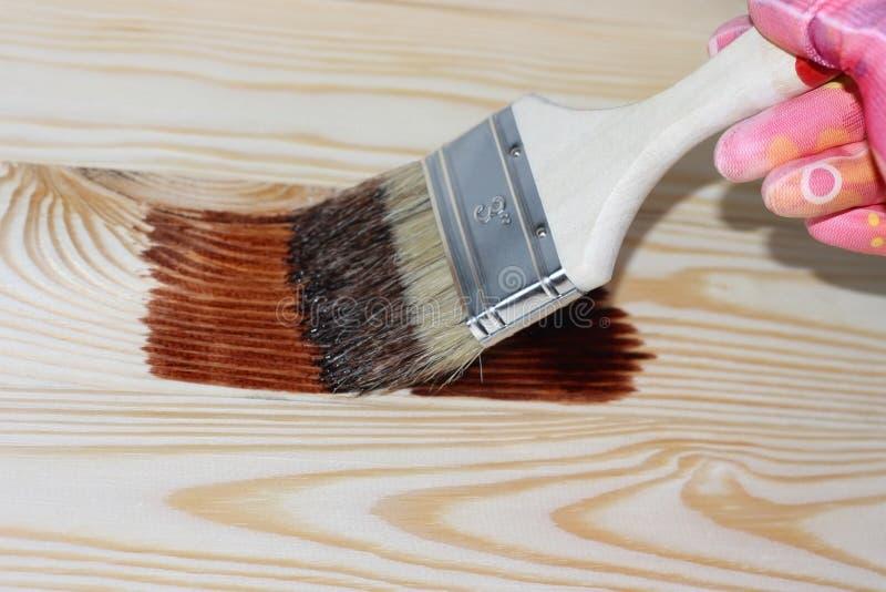 Mains dans les gants tenant une brosse en peinture photo libre de droits