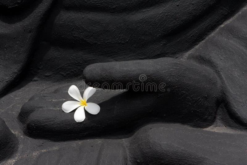 Mains de Bouddha avec la fleur images libres de droits