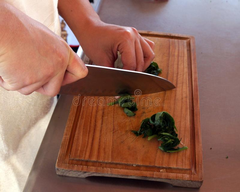 Mains de cuisinier image stock