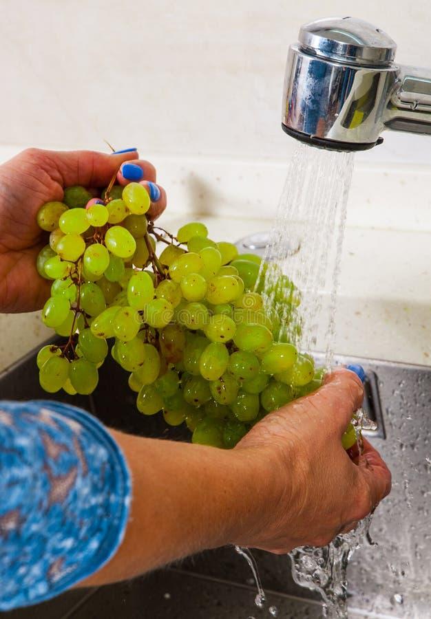Mains de femme lavant le raisin photos libres de droits