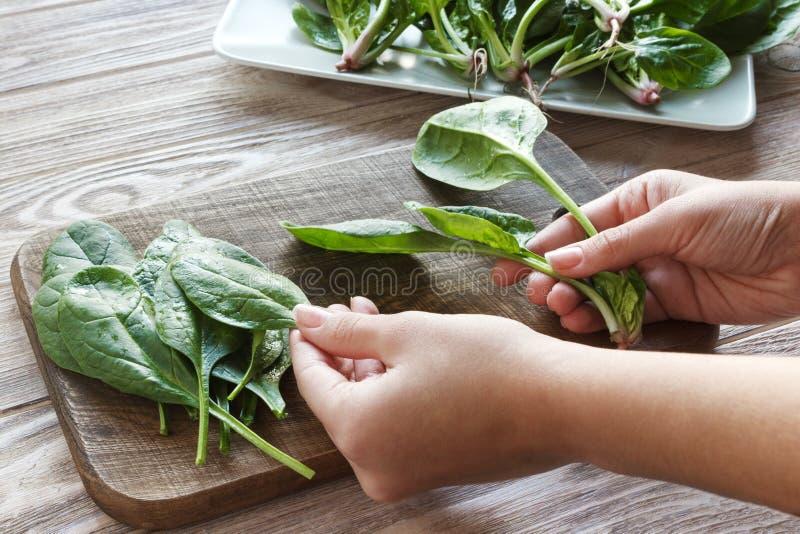 mains de femme tenant des épinards à la maison consommation saine, aliment pour bébé, régime et concept de cuisson - les mains de photos stock