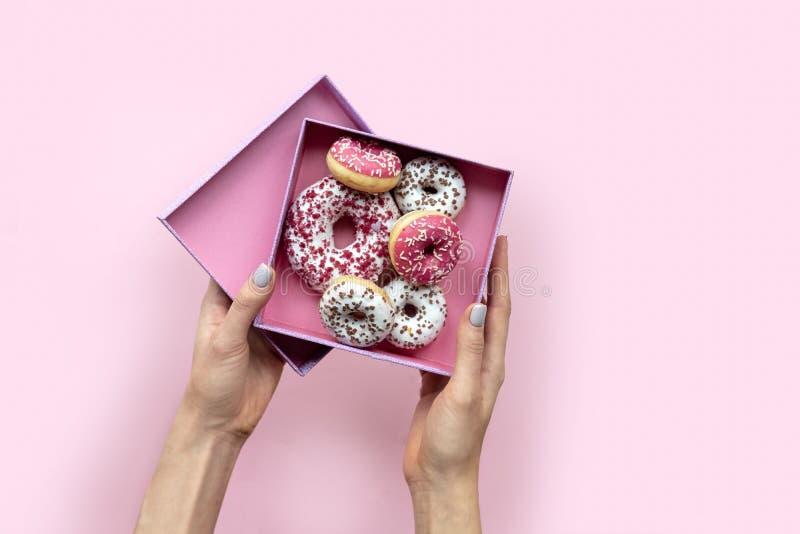 Mains de femme tenant la boîte ouverte avec des butées toriques sur le fond rose style plat de configuration images stock