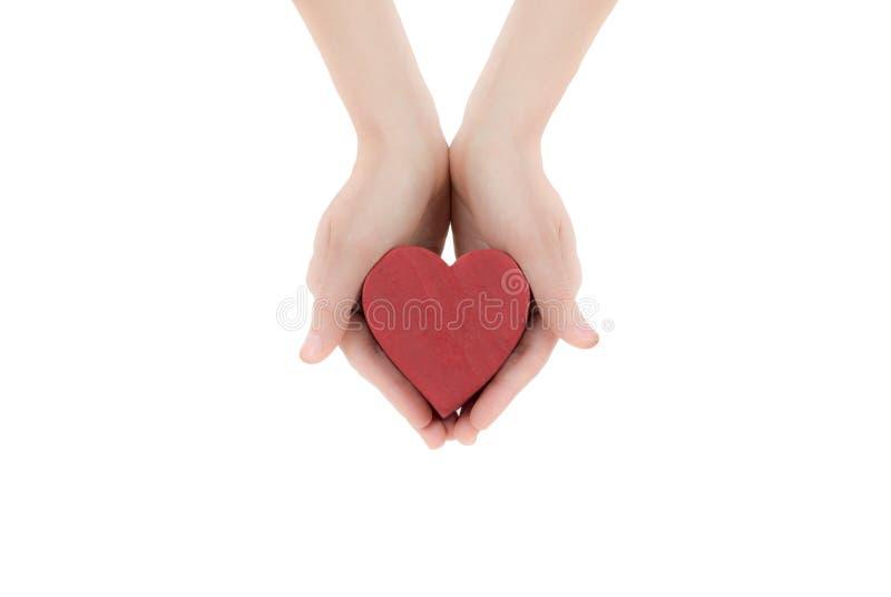 Mains de femme tenant le coeur images stock