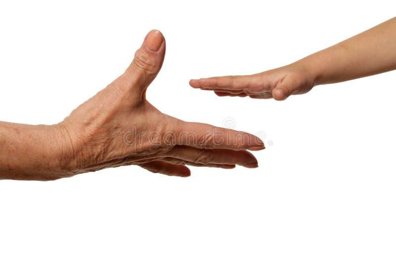 Mains de grands-m?res avec des mains de petite fille d'isolement sur le fond blanc photographie stock libre de droits