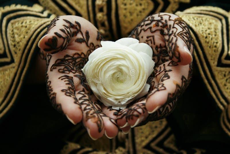 Mains de henné photos stock