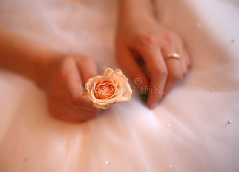 Mains de la mariée images libres de droits