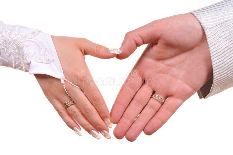 Mains de mariée et de marié photo stock