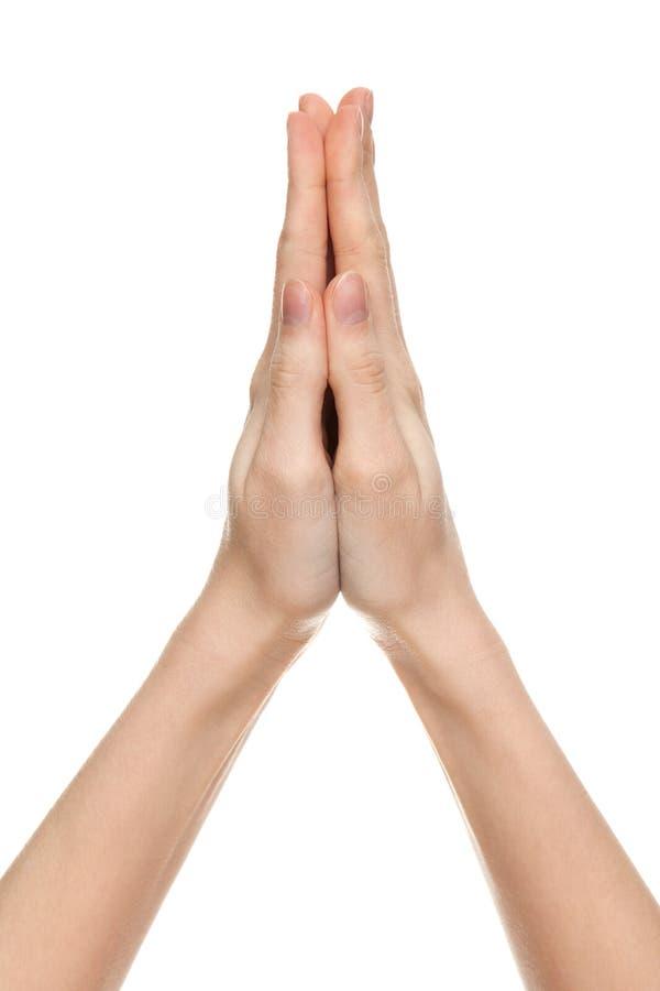 Mains de prière d'un femme photos stock