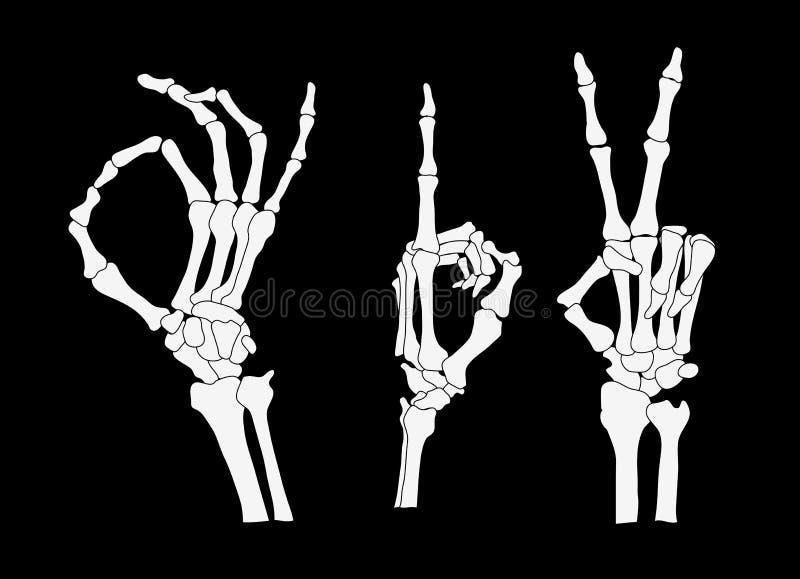 Mains 01 de squelette illustration de vecteur