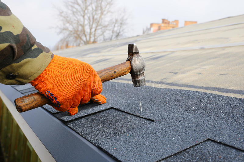 Mains de travailleur installant des bardeaux de toit de bitume Marteau de travailleur dans les clous sur le toit Le Roofer martèl photos stock