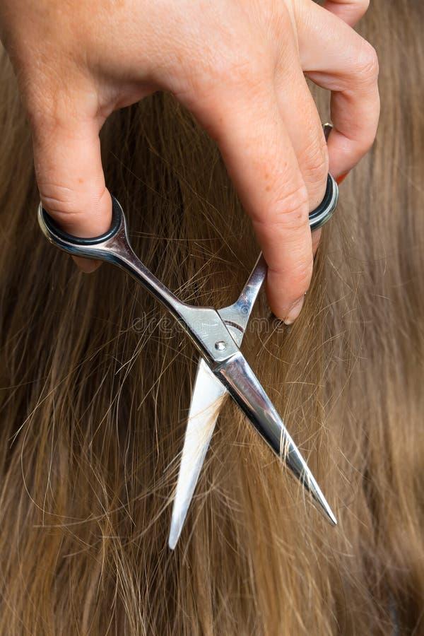 Mains des cheveux de coupe de coiffeur avec des ciseaux images libres de droits