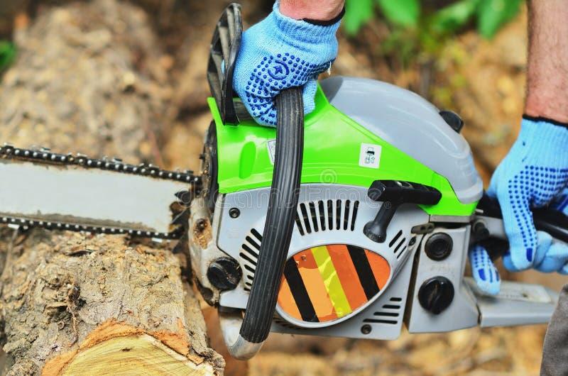 Mains du ` s d'hommes dans les gants qui travaillent à une tronçonneuse sur un arbre photos libres de droits