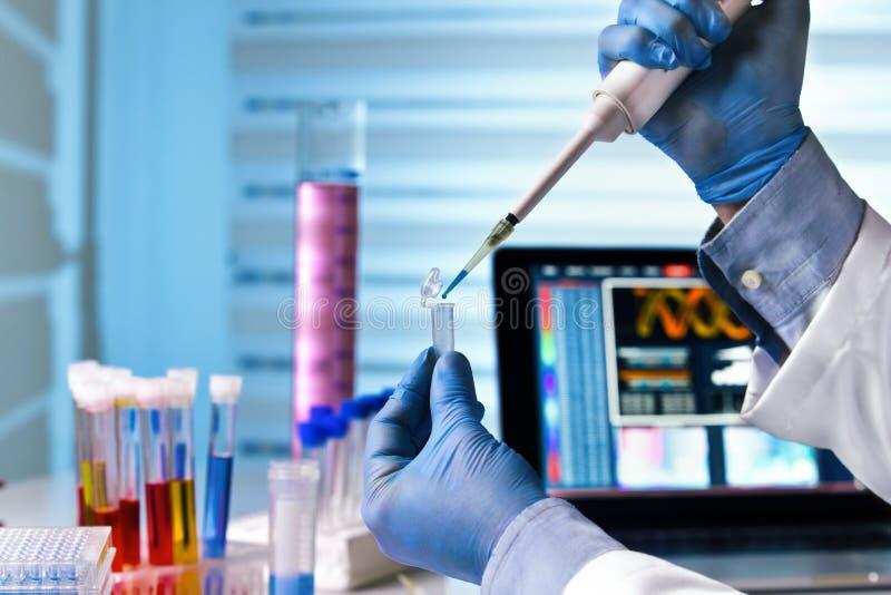 Mains du travail génétique d'ingénieur dans le laboratoire photographie stock libre de droits