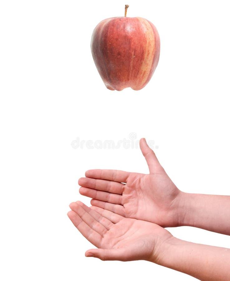 mains en baisse de pomme à photo libre de droits