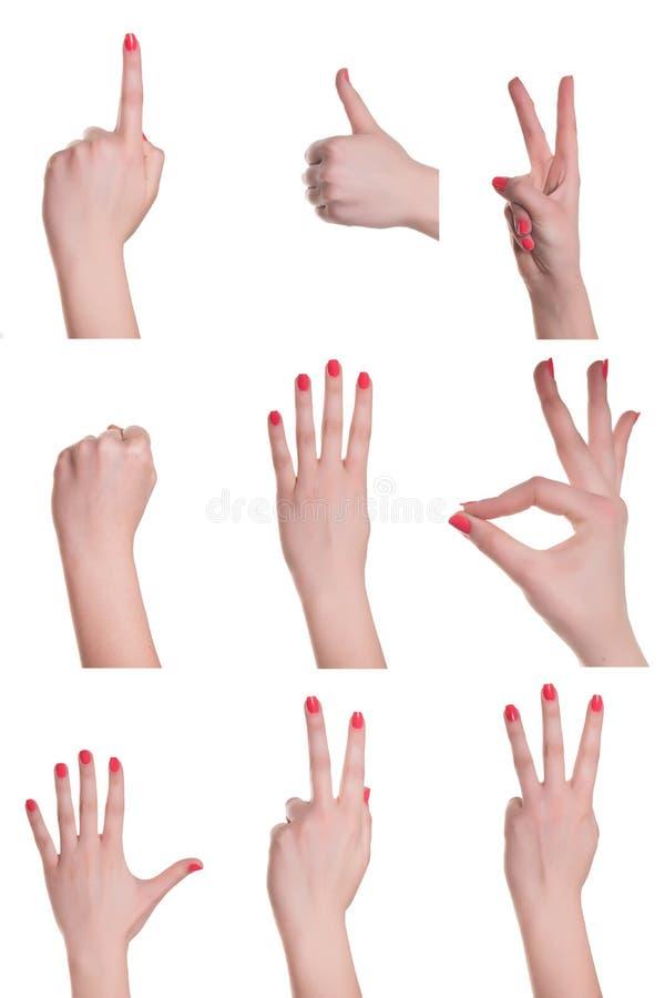 Mains et signes image stock