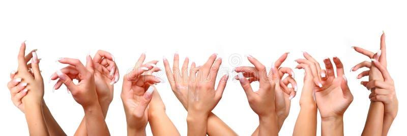Mains femelles images libres de droits