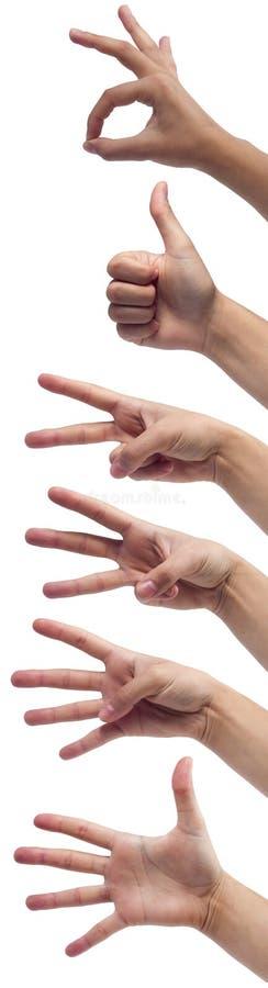 Mains femelles comptant de zéro à cinq photographie stock