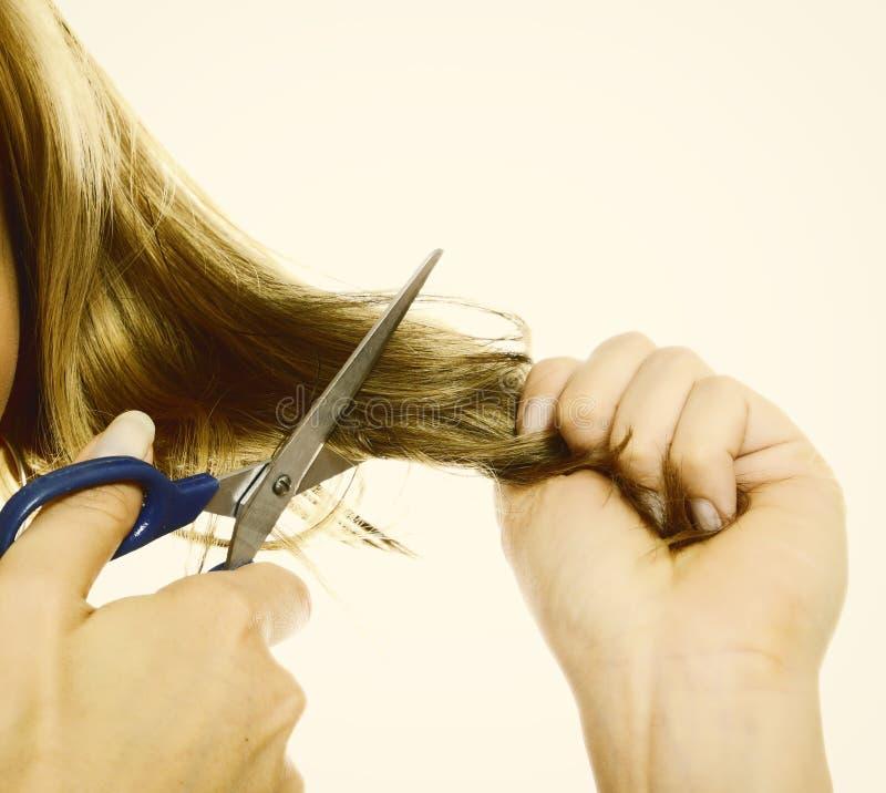 Mains femelles coupant des cheveux avec des ciseaux photos stock