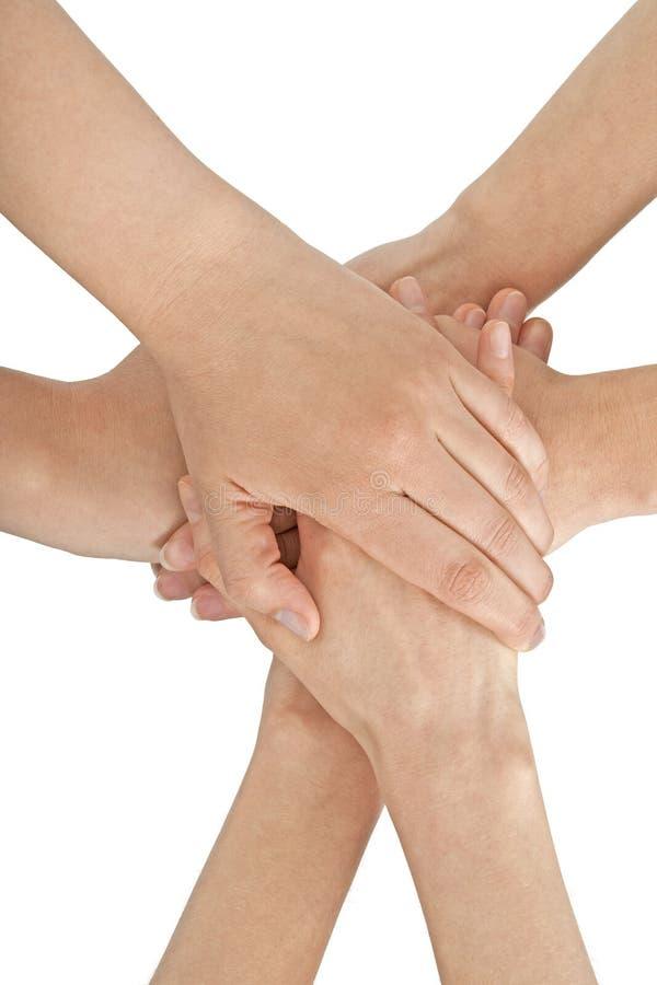 mains femelles jointives ensemble image stock