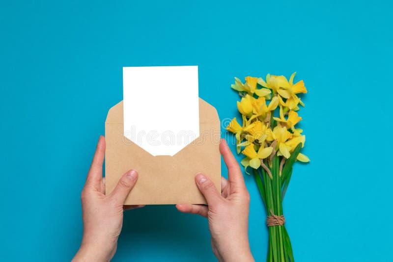 Mains femelles tenant l'enveloppe de métier avec une carte, jonquilles jaunes fraîches sur un fond bleu Bureau, concept de ressor photos libres de droits