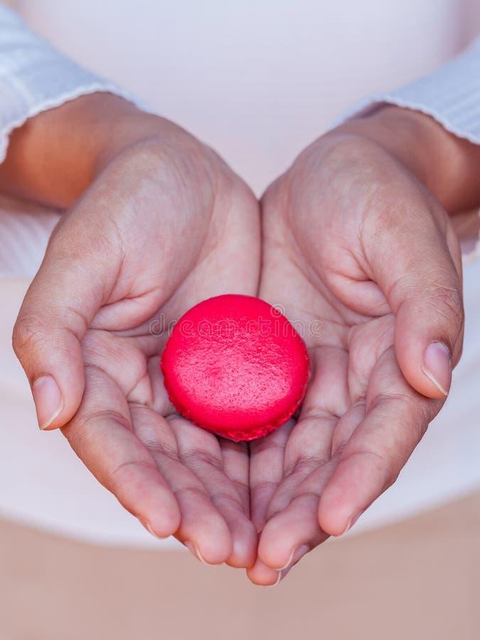 Mains femelles tenant les macarons français image stock