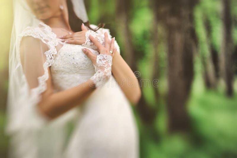 Mains hautes étroites de jeune mariée image libre de droits