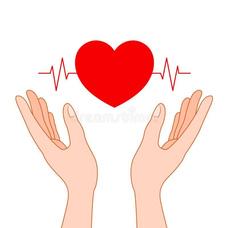 Mains humaines tenant la forme rouge de coeur avec la ligne d'ecg illustration libre de droits