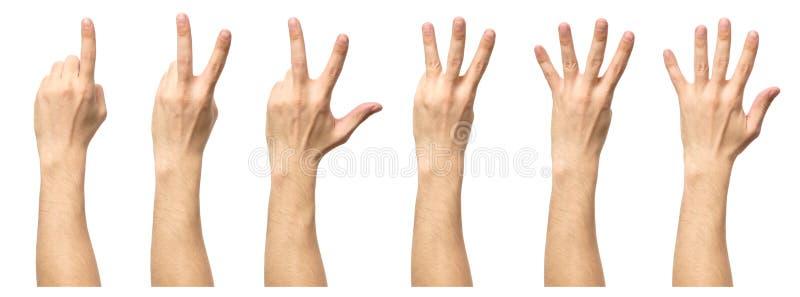 Mains masculines comptant d'un à cinq d'isolement photo libre de droits