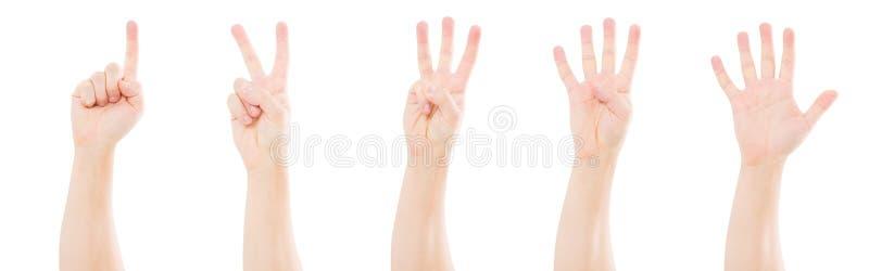 Mains masculines comptant d'un à cinq d'isolement sur le fond blanc, l'espace de copie, faux  photographie stock