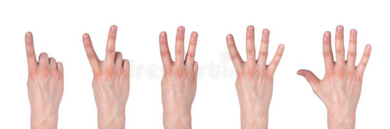 Mains masculines comptant d'un ? cinq d'isolement sur le fond blanc image stock