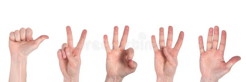 Mains masculines comptant d'un ? cinq d'isolement sur le fond blanc images stock