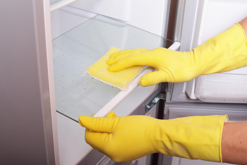 Mains nettoyant le réfrigérateur. image libre de droits