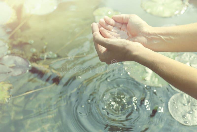 Mains sous la forme évasée obtenant l'eau d'un lac ou d'une fontaine photo stock