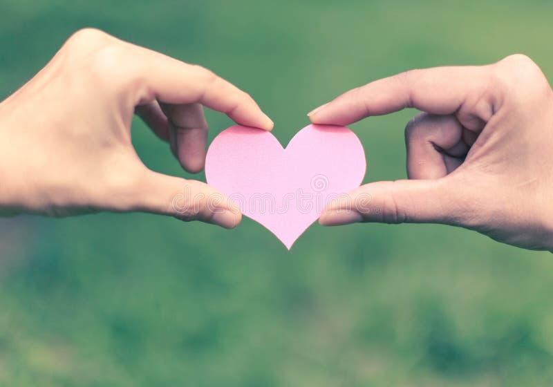 Mains tenant le coeur sur le fond de nature images libres de droits
