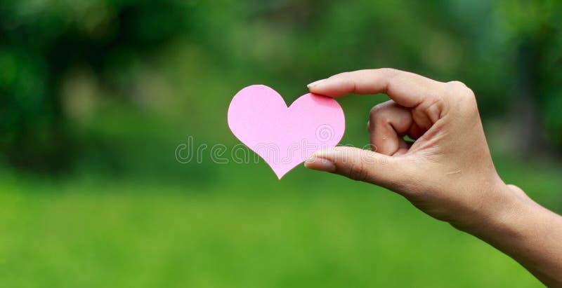 Mains tenant le coeur sur le fond de nature image libre de droits