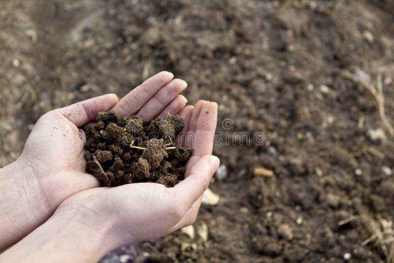 Mains tenant le sol dans le domaine agricole images stock