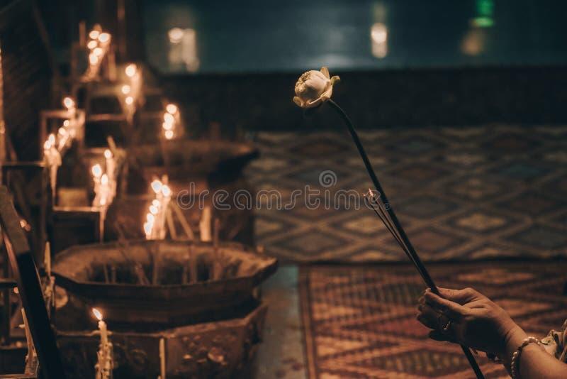Mains tenant une fleur de lotus Cérémonie bouddhiste photo stock