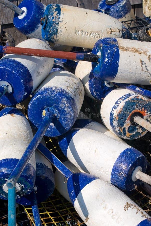 maintient à flot la langoustine photo libre de droits