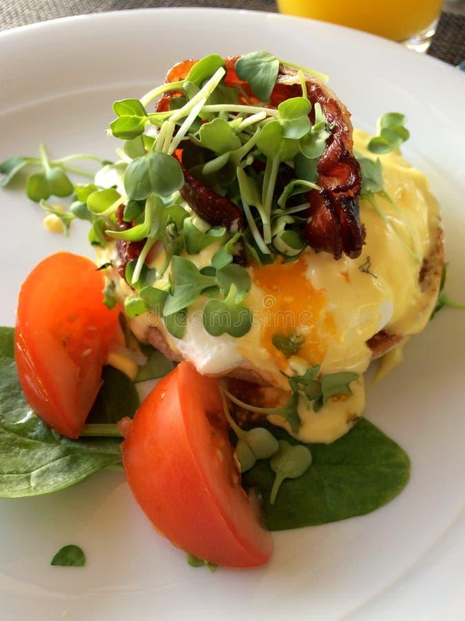 MAINZ, ALEMANHA - 8 de julho de 2017: Feche acima dos ovos Benedict com tomates, espinafres e bacon em uma placa branca com fresc fotos de stock royalty free
