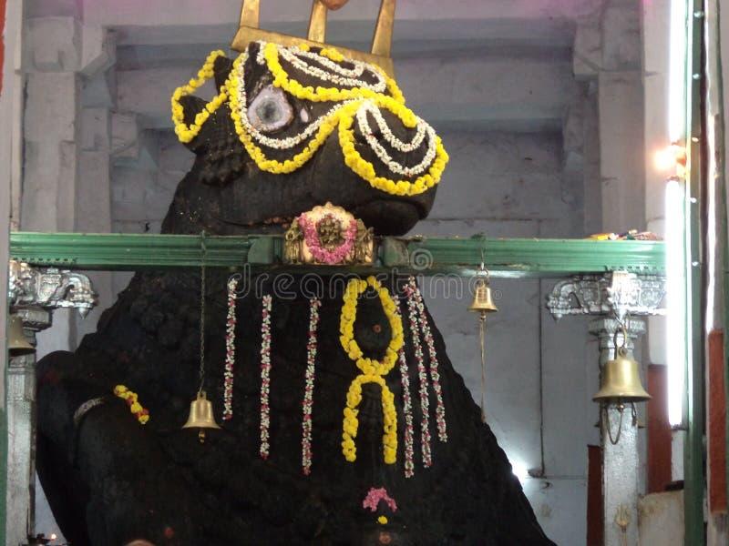 A maioria de templo grande lindo do deus do touro em Bangalore foto de stock royalty free