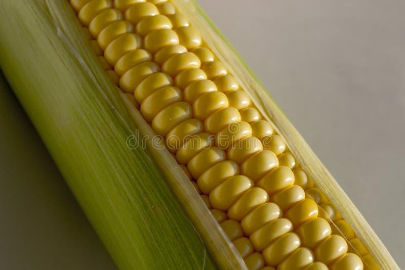 Mais auf einem weißen Hintergrund stockbild